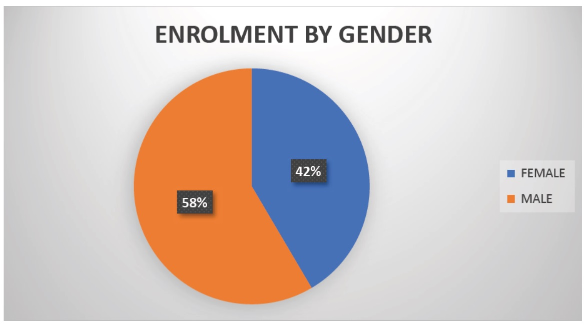 Enrolment by Gender in Percentage